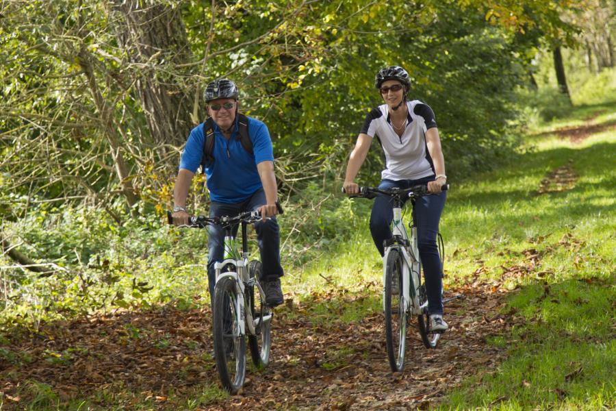 Der Herbst ist eine tolle Jahreszeit für eine Radtour auf der Schwäbischen Alb und entlang der Donau.