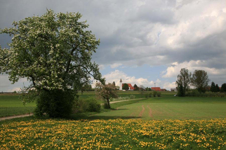 Eiszeitpfade_Waldmeisterrunde_Alb-Donau-Kreis
