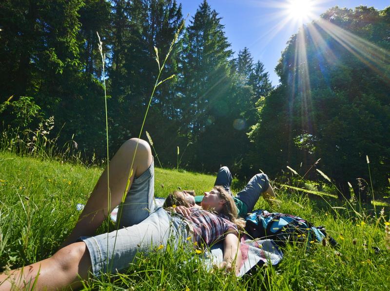 Blaustein - Sonnenpause